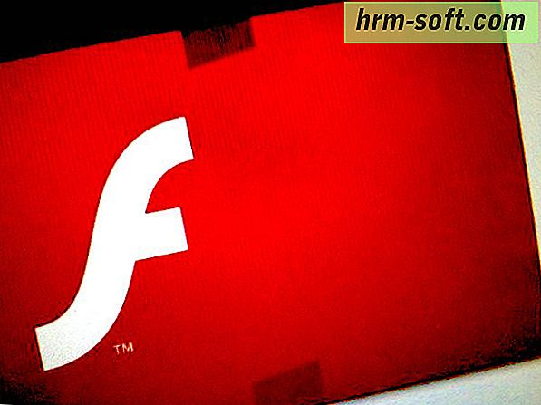 Como atualizar o Adobe Flash? Navegar na Internet